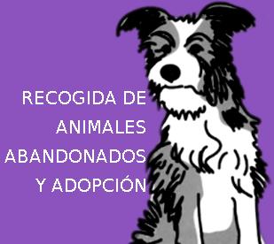 RECOGIDA ANIMALES