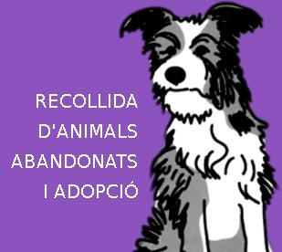 RECOLLIDA ANIMALS