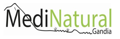 logo medi natural